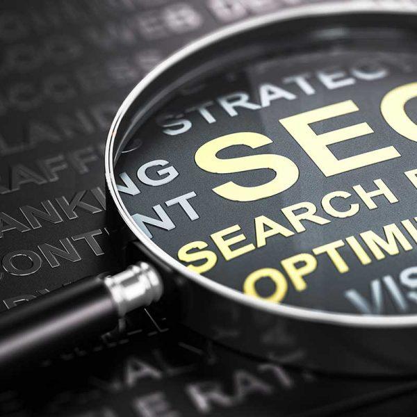 search engine optimisation basics seo